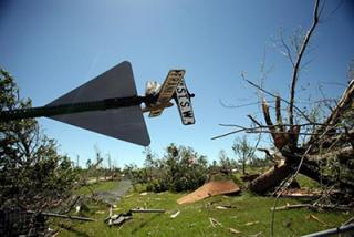 Felled trees and overturned sign